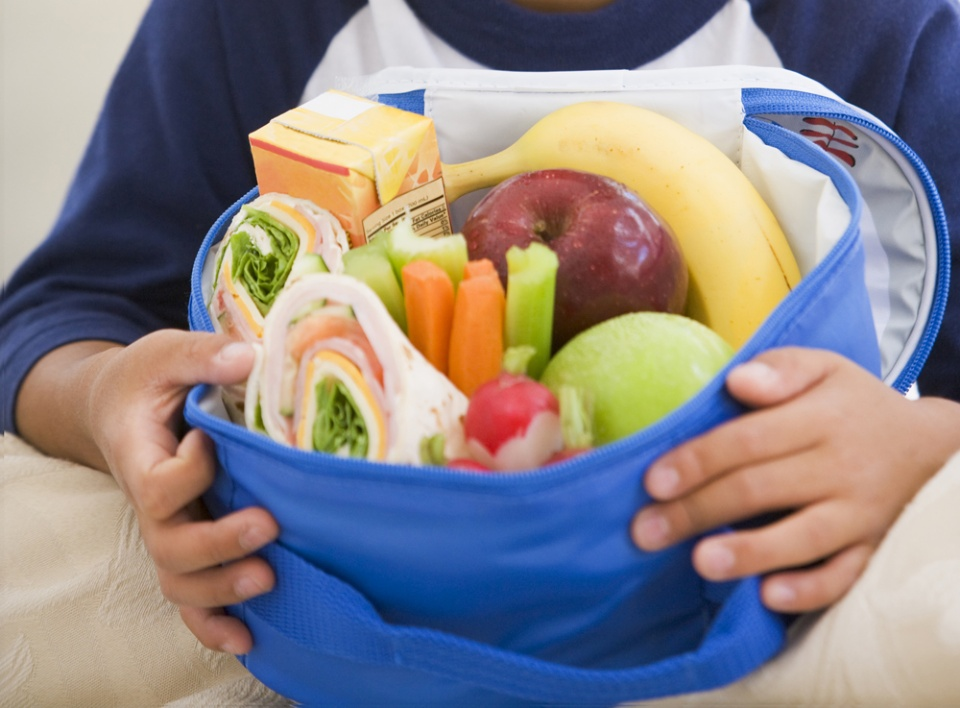 Tips and Ideas for Healthier Summer Camp Lunches | Laval Families Magazine | Laval's Family Life Magazine